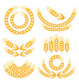 design elements with wheat vector image