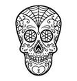 Mexican sugar skull day of the dead dia de los
