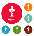 sequoia icons circle set vector image
