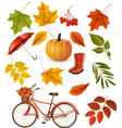Set of colorful autumn leaves and objects vector image vector image