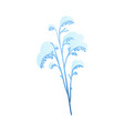 snowy plant branch for vector image vector image