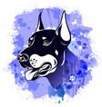 watercolor image head a dog breed vector image vector image