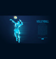 abstract silhouette volleyball player man ball vector image vector image