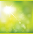 abstract summer sunlight vector image