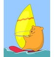 Cartoon teddy bear surfer vector image