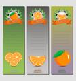 for ripe citrus fruit orange vector image