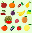fruits and berries collected in a set vector image