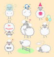 set cartoon sheeps in different positions and vector image vector image