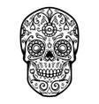 sugar skull isolated on white background day of vector image