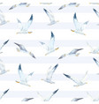 watercolor seagull pattern vector image