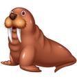 Cartoon cute walrus vector image vector image
