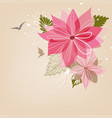 christmas poinsettia flower or christmas star vector image vector image