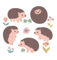 set cute hedgehogs isolated on a white vector image
