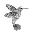 Zentangle stylized black Hummingbird Hand Drawn vector image vector image