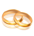big and small gold rings vector image vector image