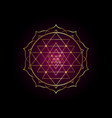 mystical mandala sri yantra for your design vector image vector image