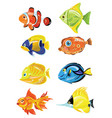 set cartoon fish collection cute colored vector image vector image