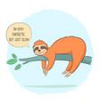 sloth sleep on branch vector image vector image