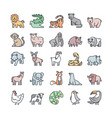 wildlife outline color icons set vector image
