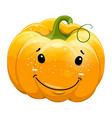 cartoon fun toothy smile pumpkin character vector image vector image