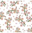 Gentle branch of cherry blossoms vector image