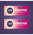 Gift vouchers with 100 and 500 dollars value vector image