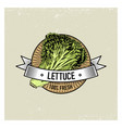 lettuce vintage set of labels emblems or logo for vector image vector image