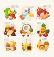 organic food categories vector image vector image