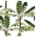 tropical palm trees banana tree floral seamless vector image vector image