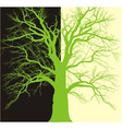 Background with old tree branched vector image vector image