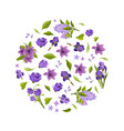 beautiful flowers round shape elegant vector image vector image