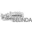 belinda cigars text word cloud concept vector image vector image