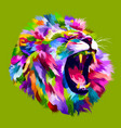 colorful angry lion head vector image vector image