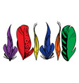 colorful hand drawn bird feathers isolated on vector image