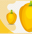 fresh vegetable yellow pepper bell on dots vector image