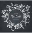 vintage fruits card design on chalkboard vector image vector image