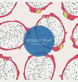 hand drawn abstract tropical pattern of exotic vector image