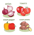 Vegetable icon set in flat style vector image