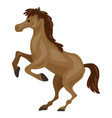 brown horse icon cartoon style vector image