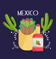 burrito cactus and hot sauce mexican food vector image