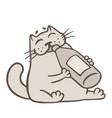 cartoon gray cat drinks lemonade vector image vector image