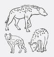 hyena wild animal sketches vector image vector image