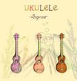 ukulele soprano set vector image vector image