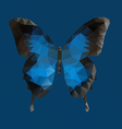Dark blue butterfly in polygonal technique vector image