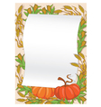 autumn and pumpkin background vector image vector image