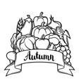 harvest festival background autumn vector image vector image