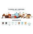 infographics different types coffee flat vector image vector image