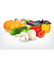 juicy and ripe vegetables vector image vector image