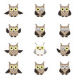 set of funny owls vector image vector image