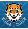 Tiger Logo Team Symbol Sport Mascot Icon Isolated vector image